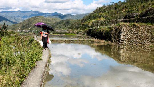 Trek rizieres banaue