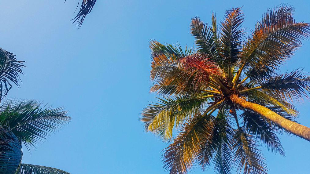 Quelle plage choisir à Cartagena ?